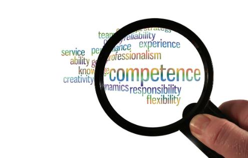 vCFO Competence